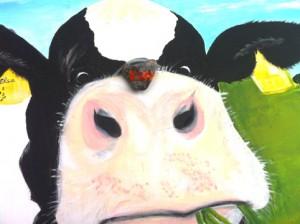Kuh auf Kuhbild R. Evertz Witzhelden opti