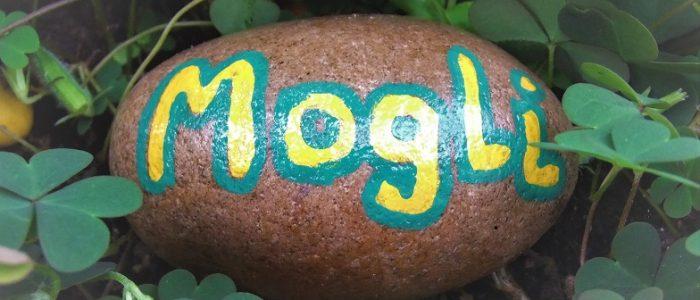 Wörtchen der Woche No 10: Mogli